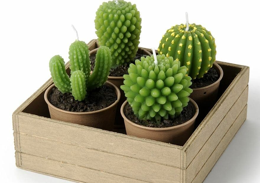 Idées déco: les bougies cactus
